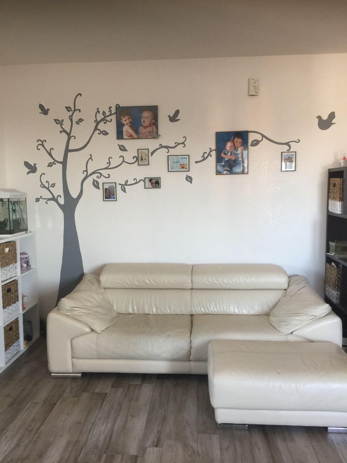 decorazione di una parete, decorazione di una parete con gli alberi delle foto